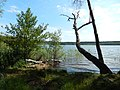 +20180611Müritz-Nationalpark.Feisneck See.-016.jpg
