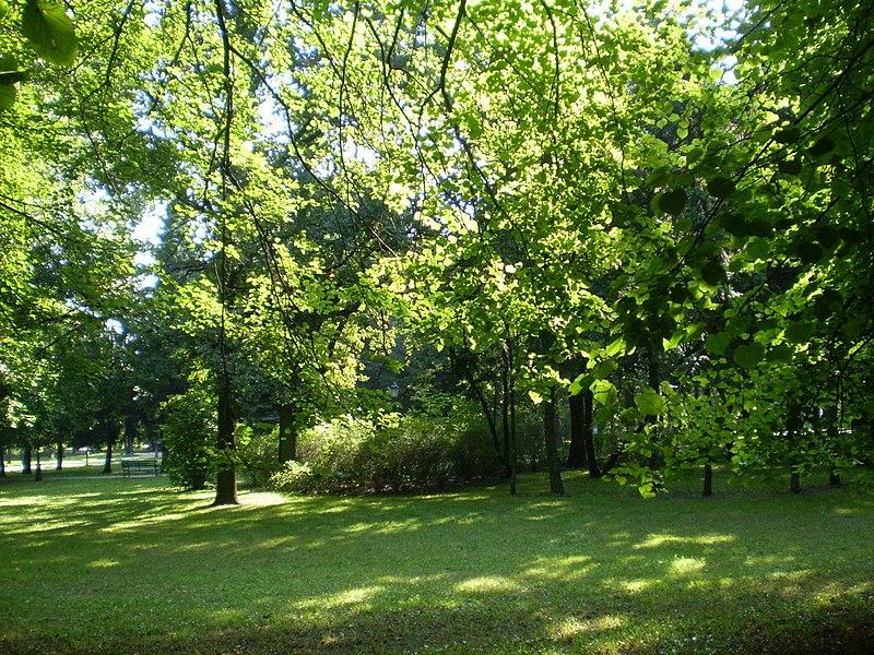 Łódź - Park Staromiejski