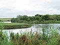Андріївський ліс на березі р. Гайчур.jpg