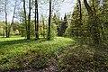 Весенние поляны в парке Сергиевка.jpg