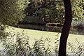 """Дача Эсворт (""""Литания"""") 3.jpg"""