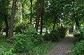 Дендропарк лісгоспу, де нині Острозька єпархія.jpg