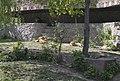 Киевский зоопарк (12).jpg