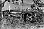 Немецкий ДЗОТ у деревни Чернушки. Кадр 2.jpg