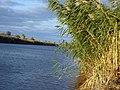 Оросительный канал - panoramio.jpg