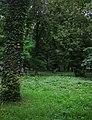 Парк відпочинку, м. Берегово 21-102-5001.jpg