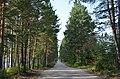 Поездка в Северомуйск (016).jpg