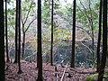 山間のため池 - panoramio.jpg