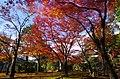 神護寺地蔵院 京都市右京区 2013.11.21 - panoramio.jpg