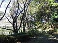 籠口ノ池公園 - panoramio.jpg