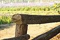 蓝调庄园的木桩 - panoramio.jpg