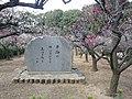 道明寺天満宮 梅園 Dōmyōji-temmangū 2011.2.27 - panoramio (1).jpg