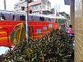 關西 Guanxi - panoramio.jpg