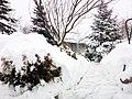 - panoramio - Engelbert233.jpg