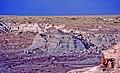 00 1015 The Painted Desert - Arizona (USA).jpg