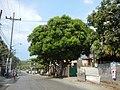 0134jfQuirino Highway Caloocan City Norzagaray San Jose sectionsfvf 01.JPG