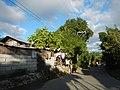 0160 jfFarms Pulo Roads Talacsan San Rafael Bulacanfvf 15.JPG
