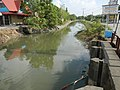 01873jfPinagbarilan Cantulinan Irrigation Baliuag Bulacan Dikes Roadfvf 11.JPG