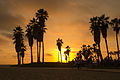 04082013 - Venice Beach - L.A. California (9591344501).jpg