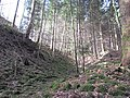 04 Waldstein Castle.JPG