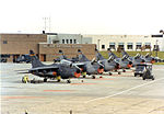 124th Tactical Fighter Squadron - A-7K and A-7Ds On Flightline.jpg
