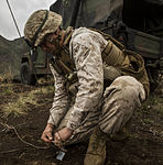 12th Marine Regiment Maneuvers Through Dragon Fire Exercise 15 150307-M-XX123-345.jpg