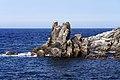 130726 Cape Peshi in Rishiri Island Hokkaido Japan05n.jpg
