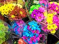 1461871 Floral-Bouquets 620.jpg