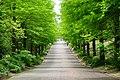 150523 Hyogo Prefectural Harima Central Park01s5.jpg