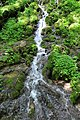 170818-2 einer der wasserführenden Autaler Wasserfälle.jpg