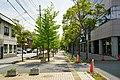 180505 Asuterasu Oda Shimane pref Japan03n.jpg