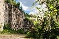 180509-1 Steinbruch bei Neckarrems mit Eschenblüte.jpg