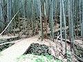 1 Chome Midoromachi, Iwakuni-shi, Yamaguchi-ken 740-0035, Japan - panoramio (1).jpg