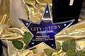2008-08 City-Stern Januar 2008, Beste City-Idee, ausgezeichnet von Hannover-City + Neue Presse für das soziale Kaufhaus fairKauf der gemeinnützigen eingetragenen Genossenschaft.jpg