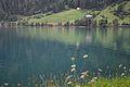 2013-08-08 09-52-51 Switzerland Kanton Graubünden Le Prese Le Prese.JPG