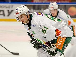 Rickard Wallin Swedish ice hockey player