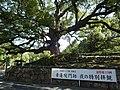 20131014 08 Kyoto - Higashiyama - Shoren-in Temple (10512746523).jpg