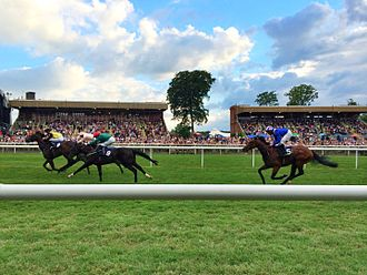 Newmarket, Suffolk - A horse race at Newmarket Racecourse