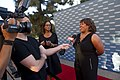 2014 Voice Awards Chandra Wilson (19730470884).jpg