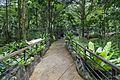 2016 Singapur, Ogrody botaniczne (212).jpg