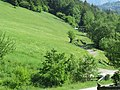 2018-05-13 (244) Nature near Bichlhäusl in Frankenfels, Austria and view to south-east.jpg