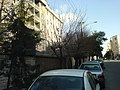 202 West Ave. - panoramio.jpg