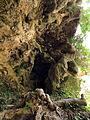 252 Detall del travertí vora el salt d'aigua del Tenes, Sant Miquel del Fai.JPG