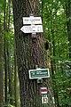 26.7.16 Purkarec to Hluboka nad Vltavou 63 (28495114491).jpg