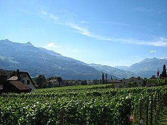 Liechtenstein wine - Vineyards near Vaduz
