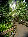 4.3.Zoo Krefeld tropenhaus.jpg