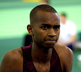 Image illustrative de l'article Mutaz Essa Barshim
