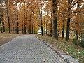 71-108-0302 Sofiivka IMG 3459.jpg
