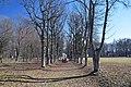 74-255-5049 Sedniv Park DSC 7075.jpg