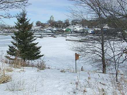 Hamilton Harbour during the winter 8Hamilton Marina.JPG